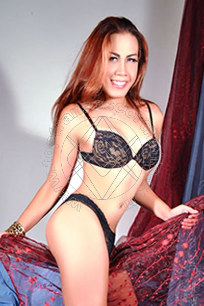 Solenn Ladyboy Trans Asiatica SERIATE 3802390861