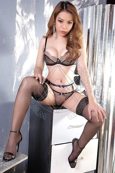 Miya Thai VICENZA 3892084613